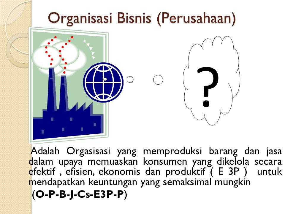 Organisasi Bisnis (Perusahaan)