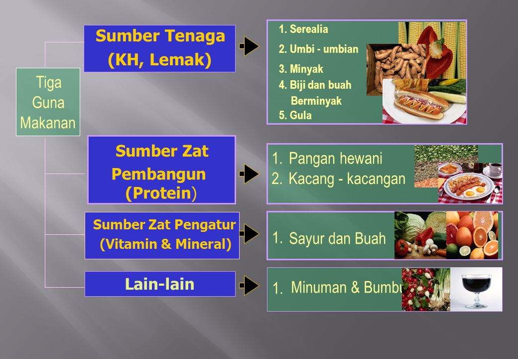 8 Sumber Tenaga (KH, Lemak) Tiga Guna Makanan 1. Pangan hewani 2.