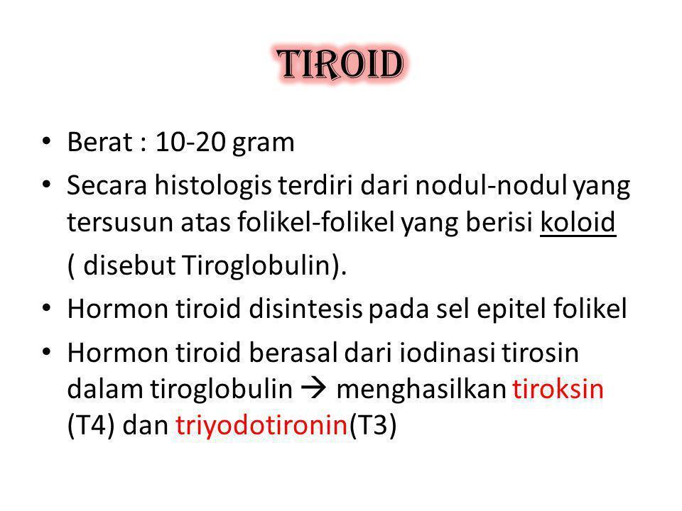 TIROID Berat : 10-20 gram. Secara histologis terdiri dari nodul-nodul yang tersusun atas folikel-folikel yang berisi koloid.