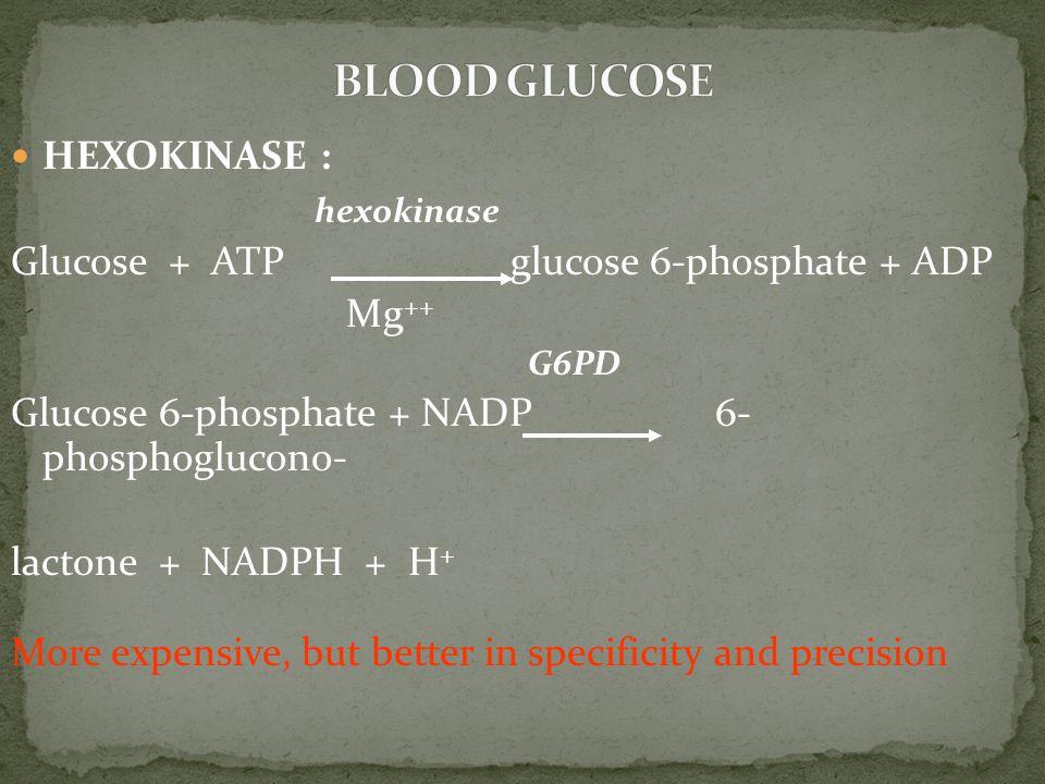 BLOOD GLUCOSE HEXOKINASE : hexokinase