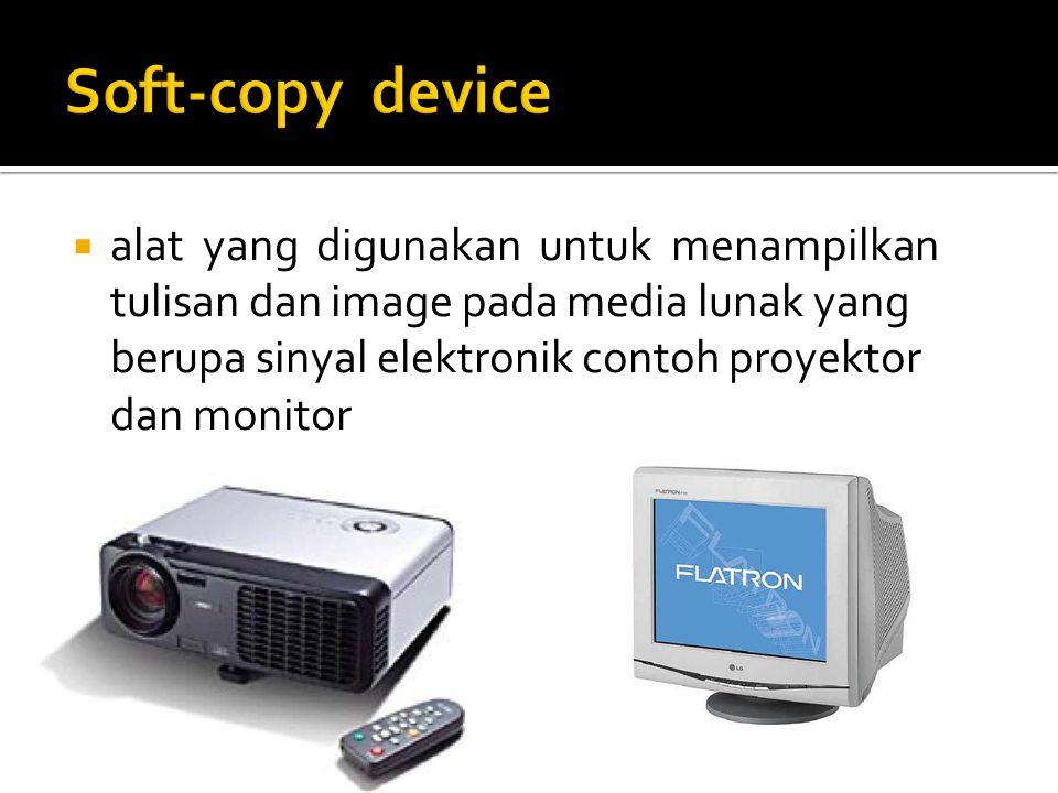 Soft-copy device