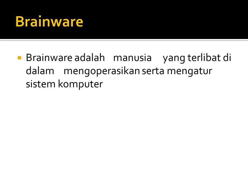 Brainware Brainware adalah manusia yang terlibat di dalam mengoperasikan serta mengatur sistem komputer.