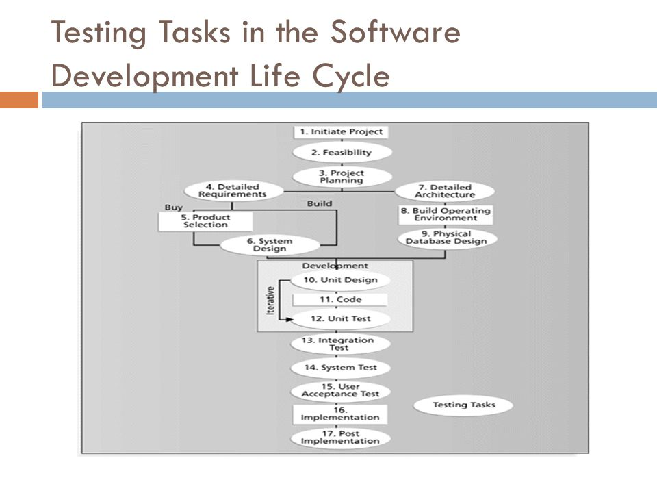 Testing Tasks in the Software Development Life Cycle