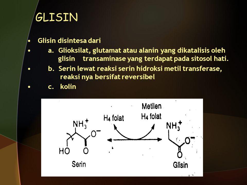 GLISIN Glisin disintesa dari