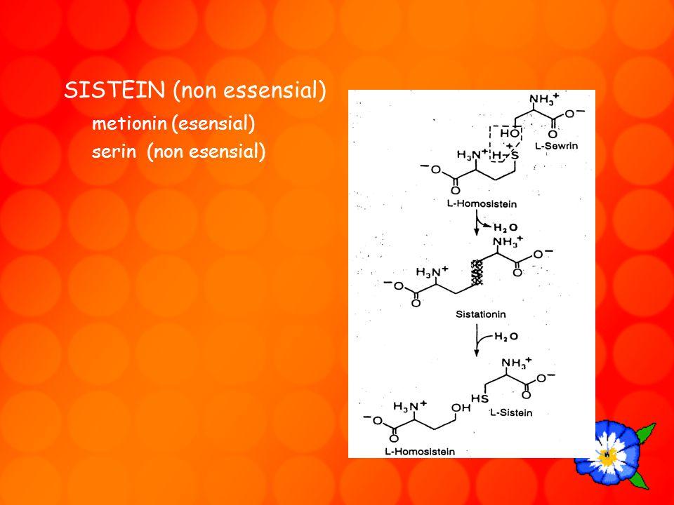 SISTEIN (non essensial) metionin (esensial)