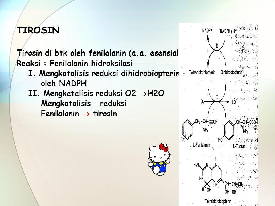TIROSIN Tirosin di btk oleh fenilalanin (a.a. esensial)