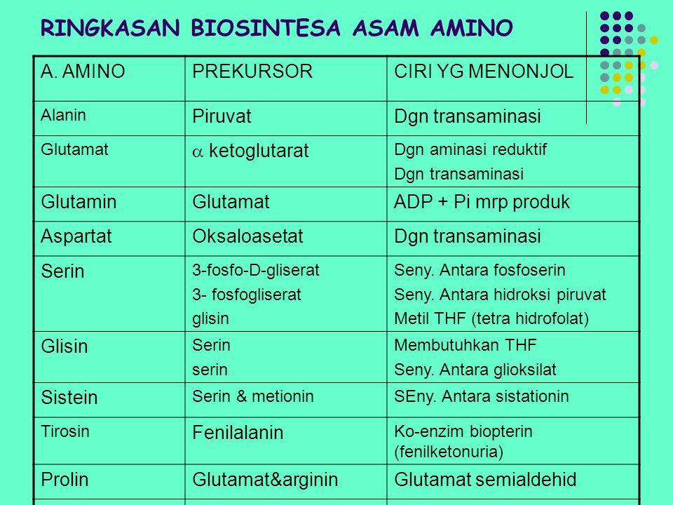 RINGKASAN BIOSINTESA ASAM AMINO