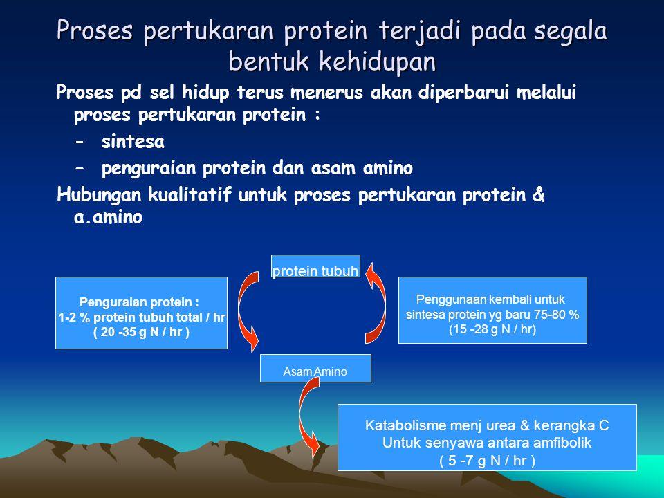 Proses pertukaran protein terjadi pada segala bentuk kehidupan