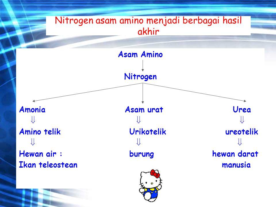 Nitrogen asam amino menjadi berbagai hasil akhir