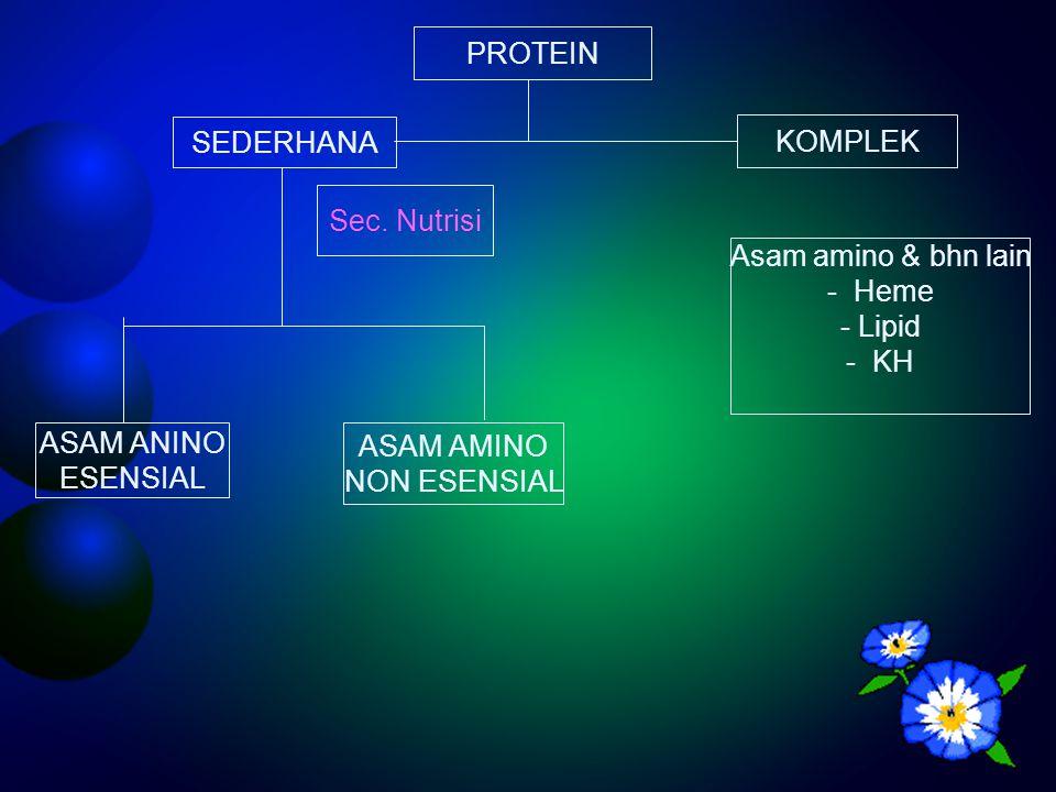 PROTEIN SEDERHANA. KOMPLEK. Sec. Nutrisi. Asam amino & bhn lain. Heme. Lipid. KH. ASAM ANINO.