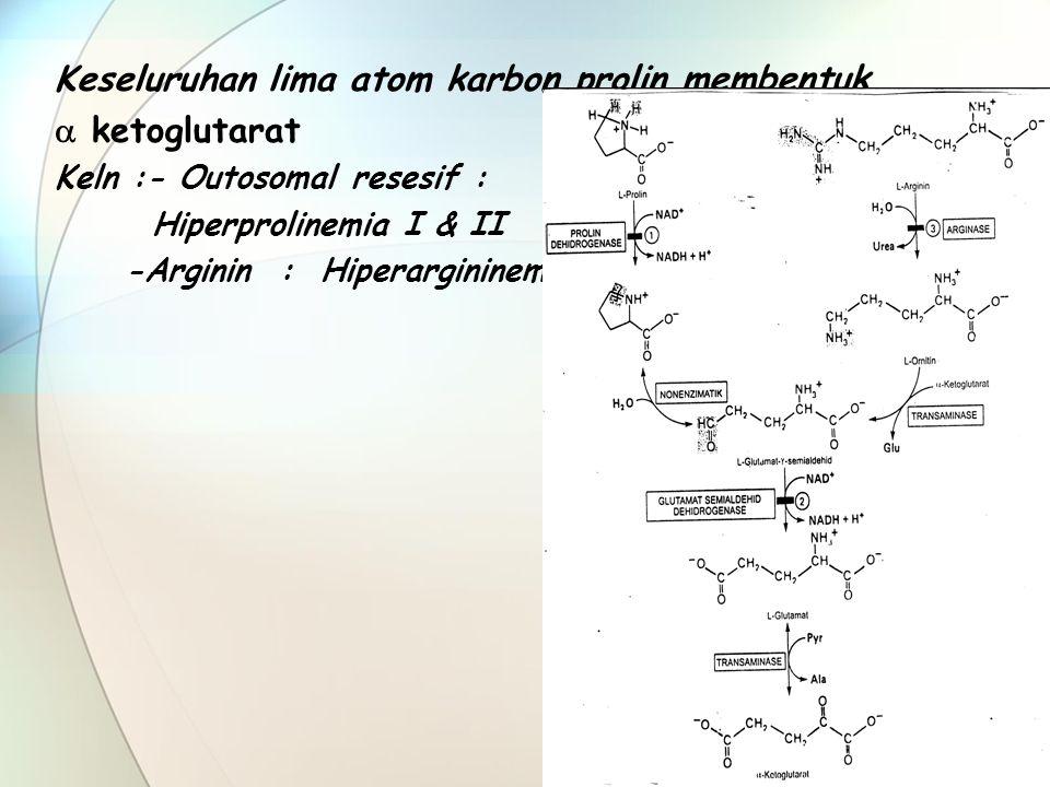 Keseluruhan lima atom karbon prolin membentuk  ketoglutarat