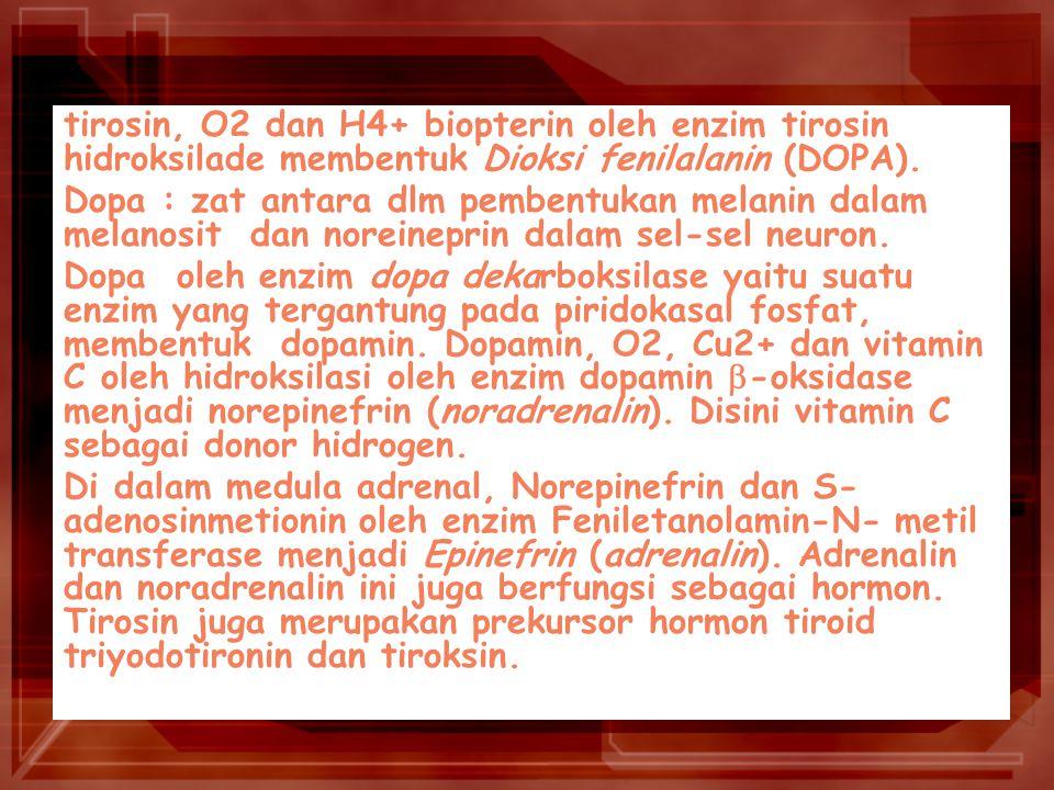 tirosin, O2 dan H4+ biopterin oleh enzim tirosin hidroksilade membentuk Dioksi fenilalanin (DOPA).