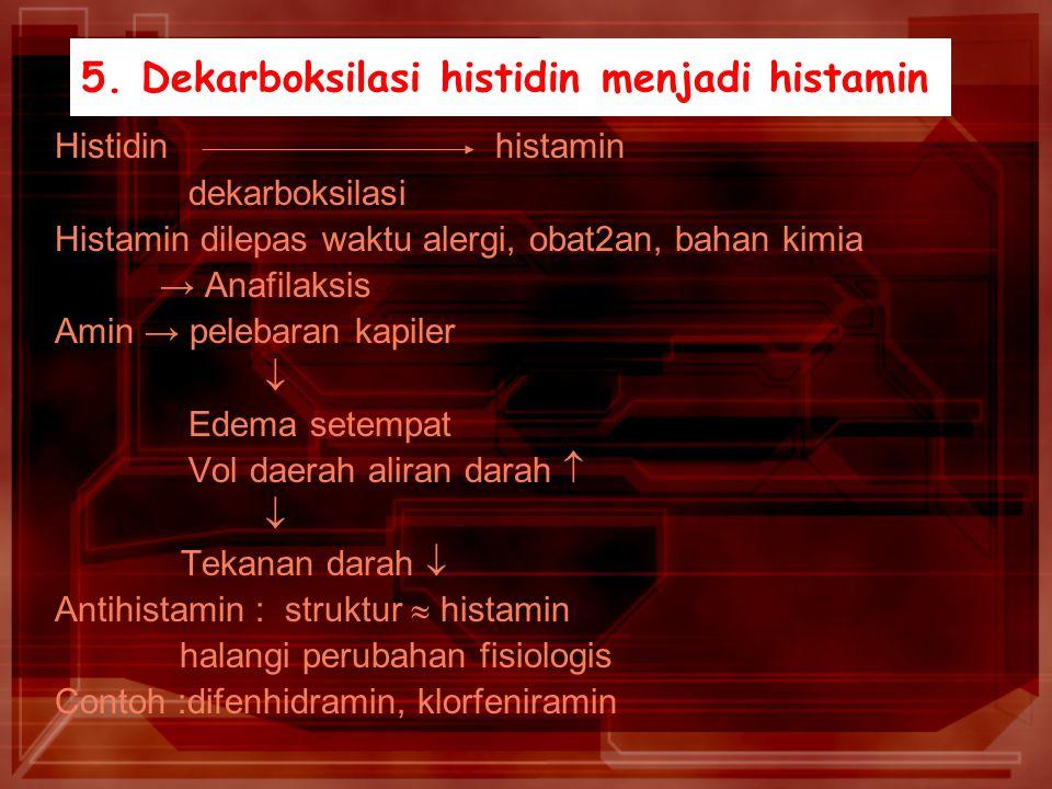 5. Dekarboksilasi histidin menjadi histamin