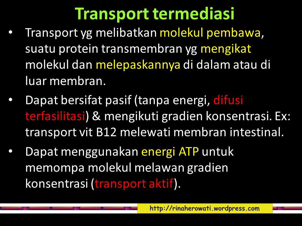 Transport termediasi