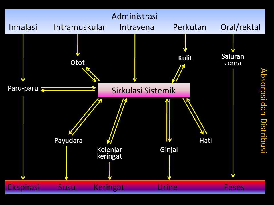 Inhalasi Intramuskular Intravena Perkutan Oral/rektal