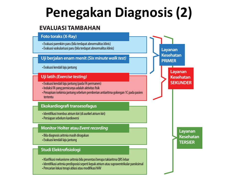 Penegakan Diagnosis (2)