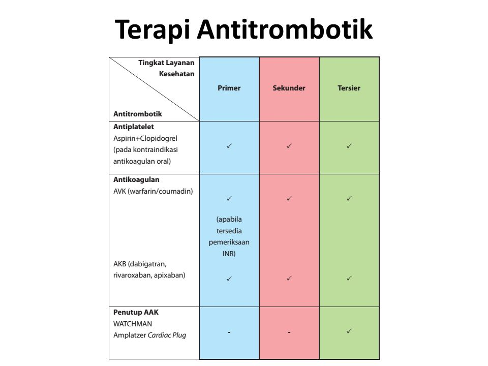 Terapi Antitrombotik