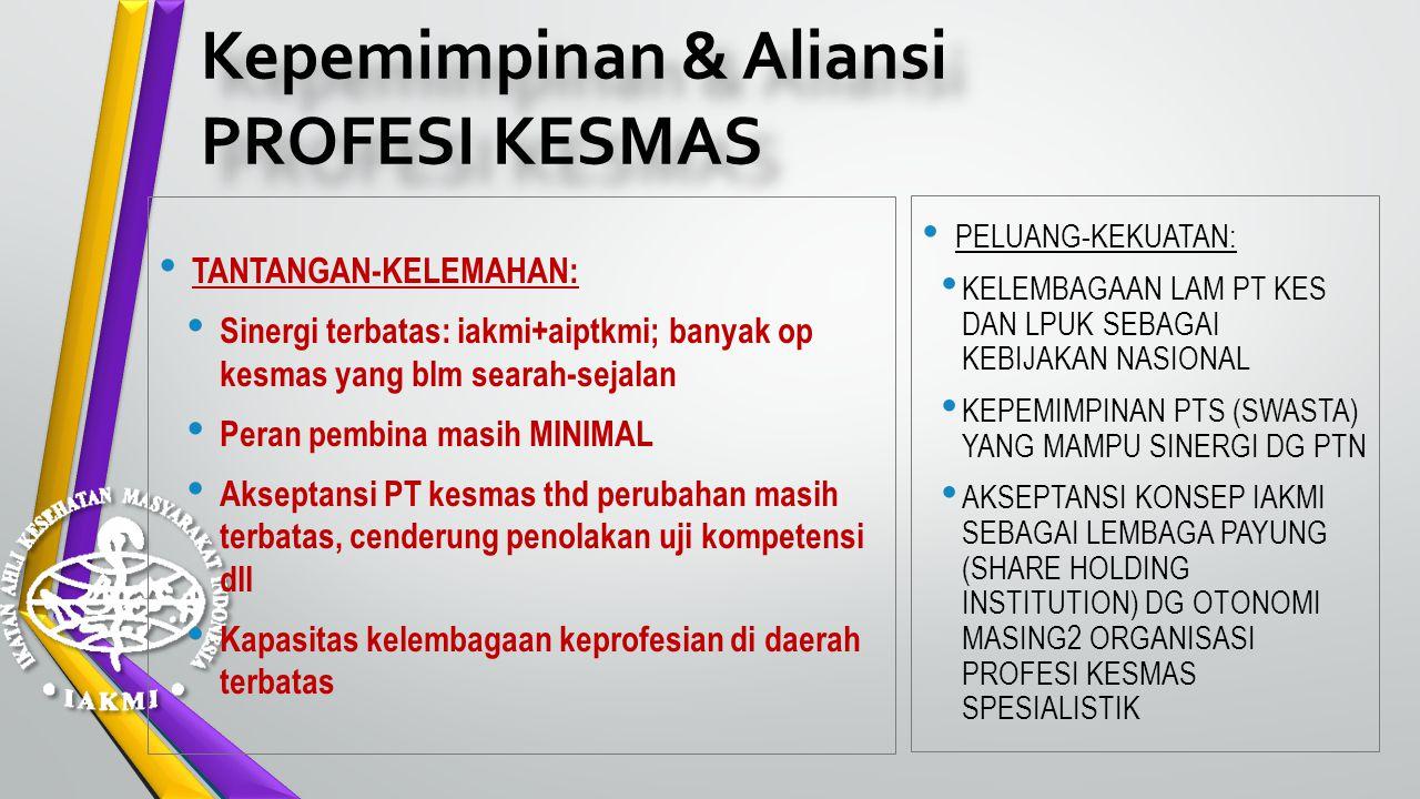 Kepemimpinan & Aliansi PROFESI KESMAS