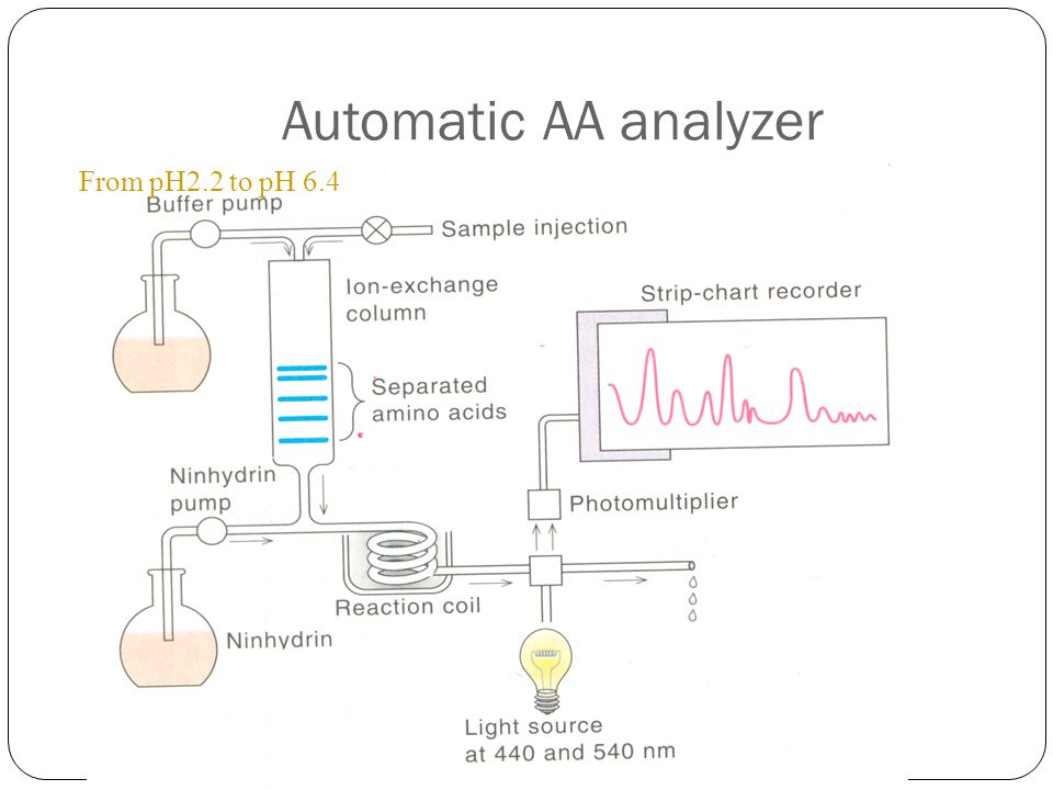 Automatic AA analyzer From pH2.2 to pH 6.4