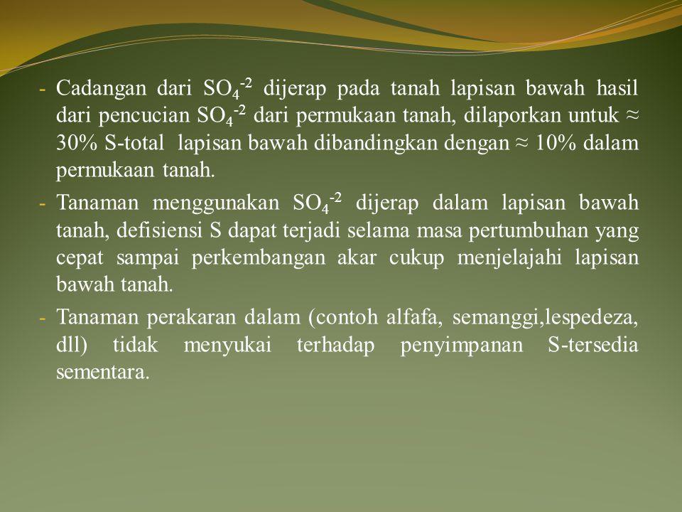 Cadangan dari SO4-2 dijerap pada tanah lapisan bawah hasil dari pencucian SO4-2 dari permukaan tanah, dilaporkan untuk ≈ 30% S-total lapisan bawah dibandingkan dengan ≈ 10% dalam permukaan tanah.