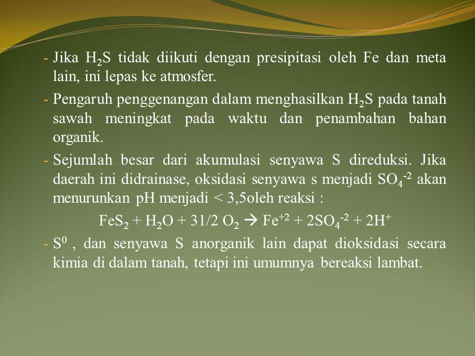 FeS2 + H2O + 31/2 O2  Fe+2 + 2SO4-2 + 2H+