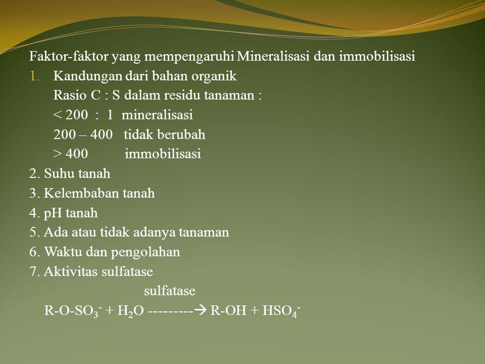 Faktor-faktor yang mempengaruhi Mineralisasi dan immobilisasi