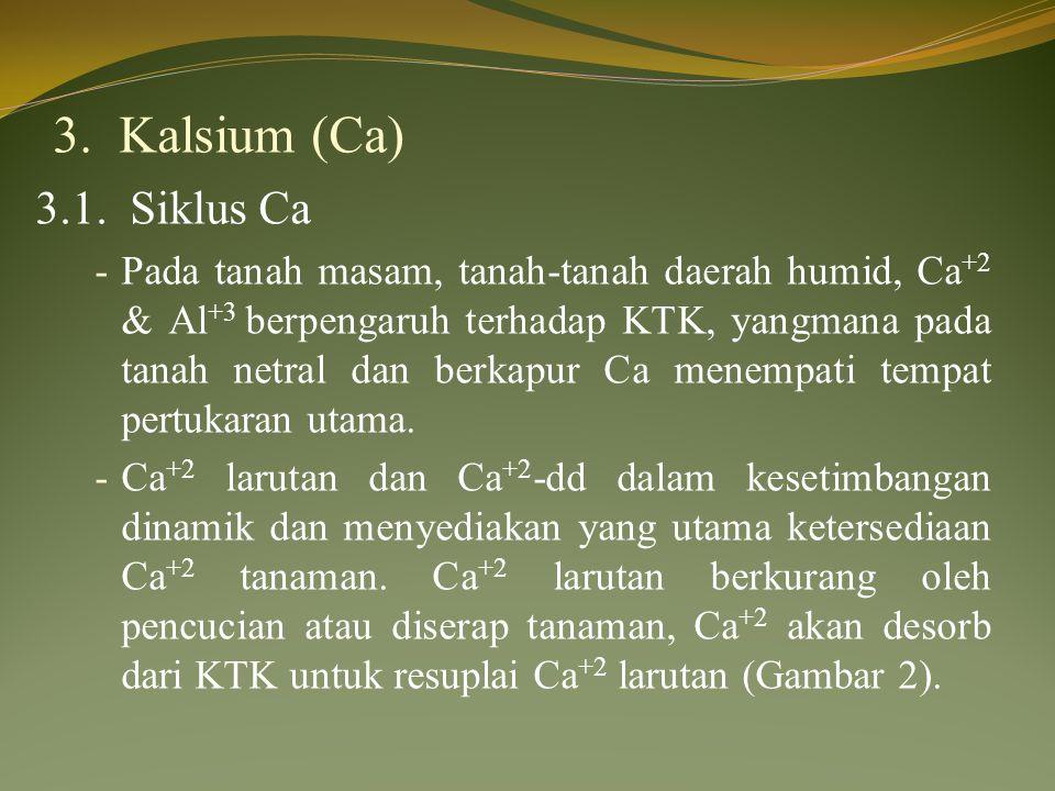 3. Kalsium (Ca) 3.1. Siklus Ca.