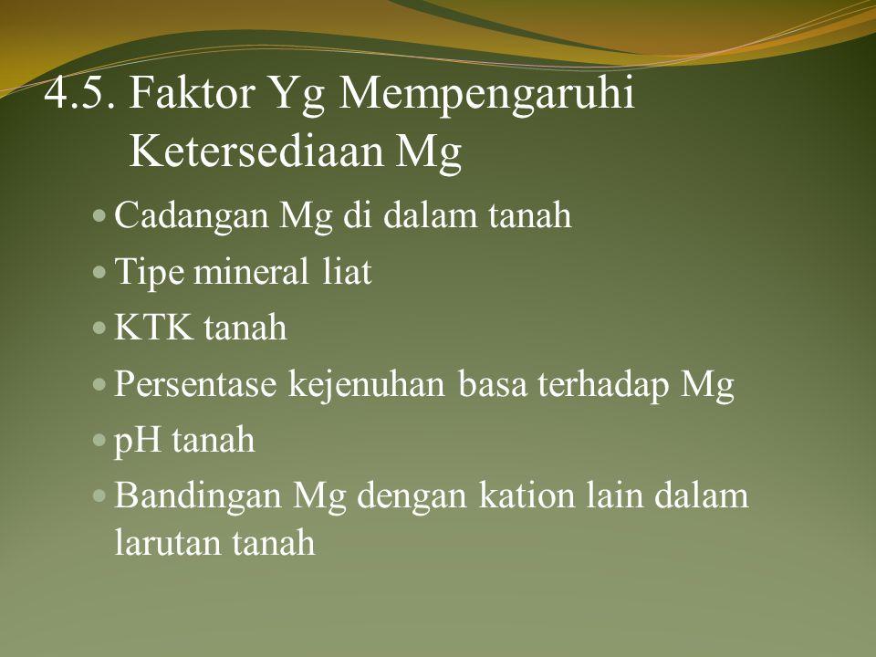 4.5. Faktor Yg Mempengaruhi Ketersediaan Mg