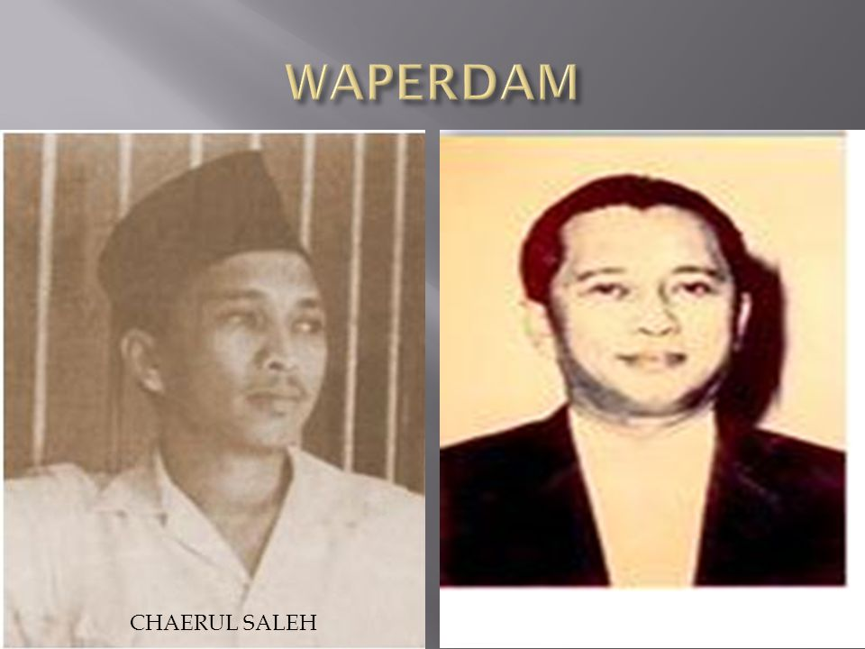 WAPERDAM CHAERUL SALEH