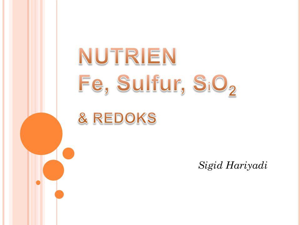 NUTRIEN Fe, Sulfur, SiO2 & REDOKS
