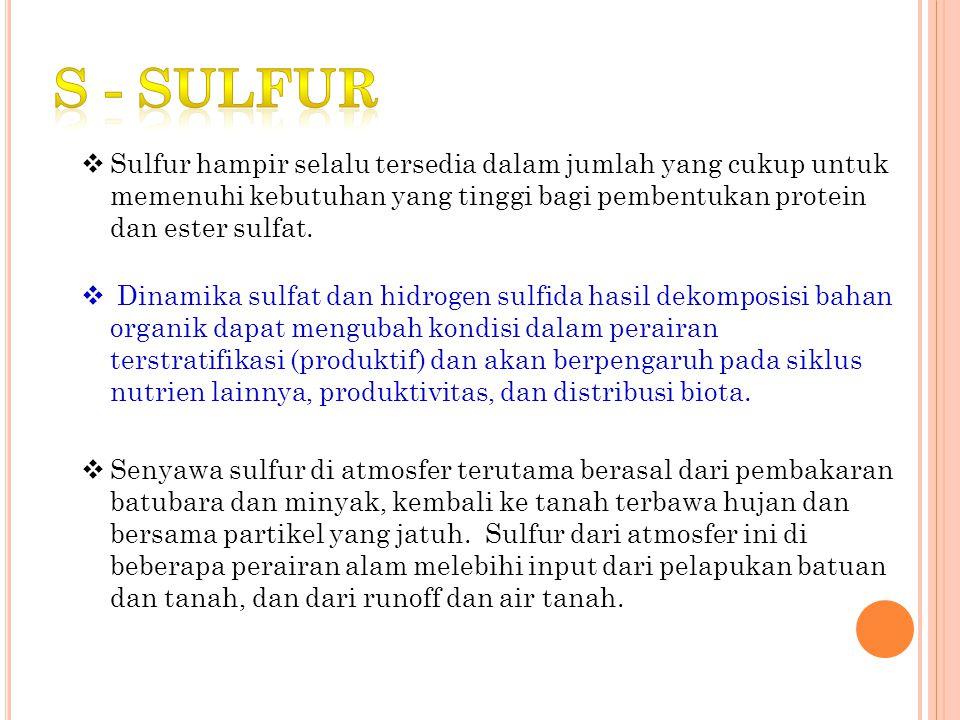 S - sulfur Sulfur hampir selalu tersedia dalam jumlah yang cukup untuk memenuhi kebutuhan yang tinggi bagi pembentukan protein dan ester sulfat.
