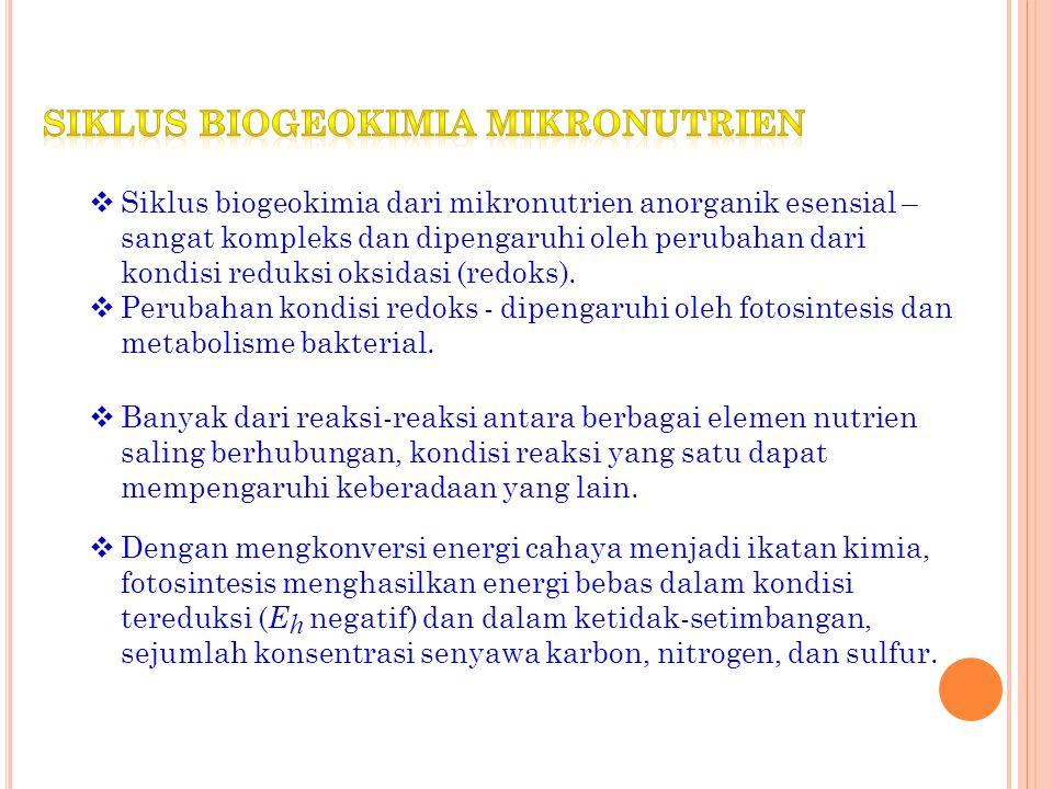 Siklus biogeokimia mikronutrien