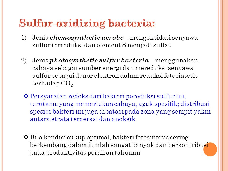 Sulfur-oxidizing bacteria:
