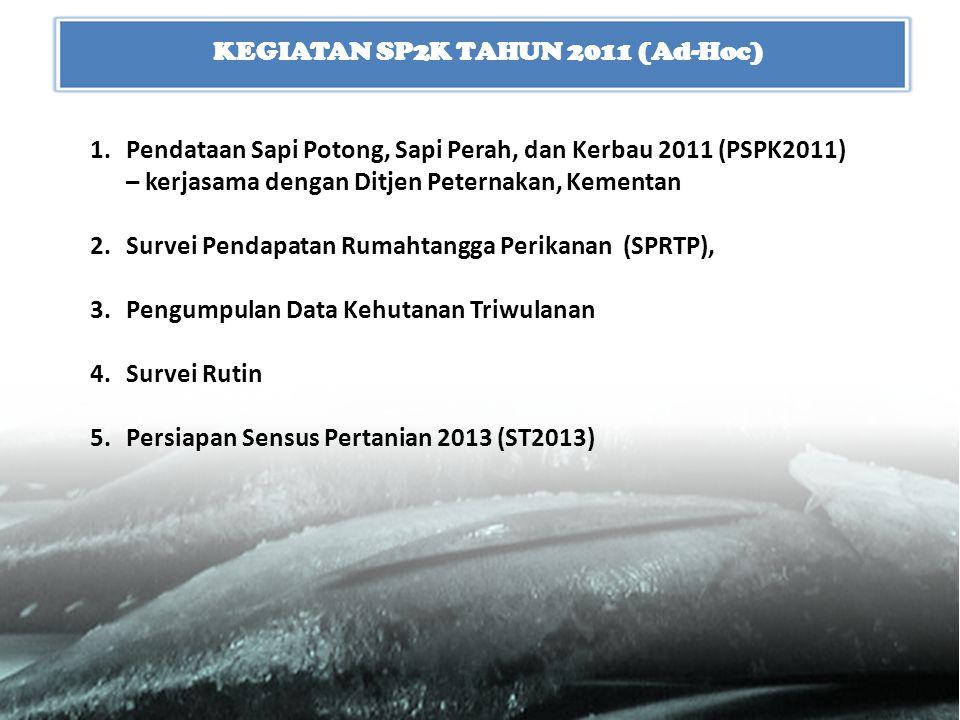 KEGIATAN SP2K TAHUN 2011 (Ad-Hoc)