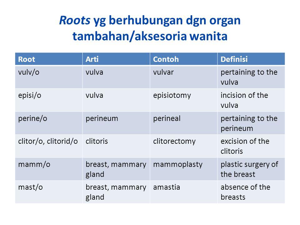 Roots yg berhubungan dgn organ tambahan/aksesoria wanita