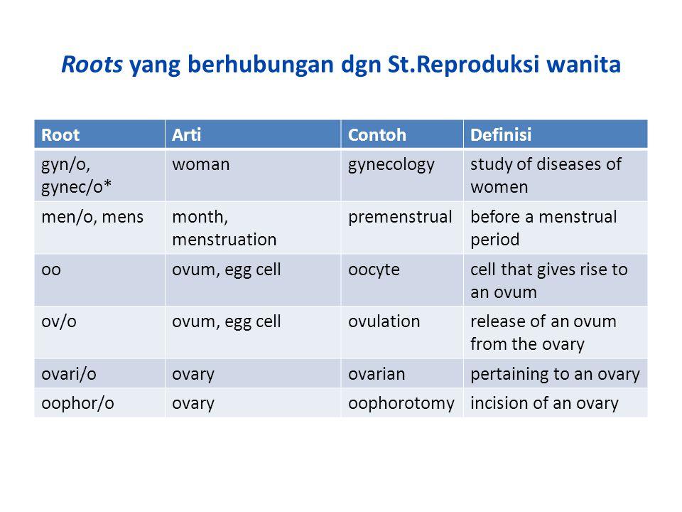 Roots yang berhubungan dgn St.Reproduksi wanita