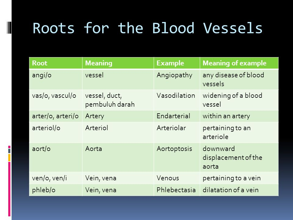 Roots for the Blood Vessels