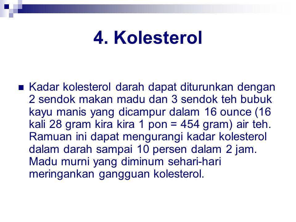 4. Kolesterol