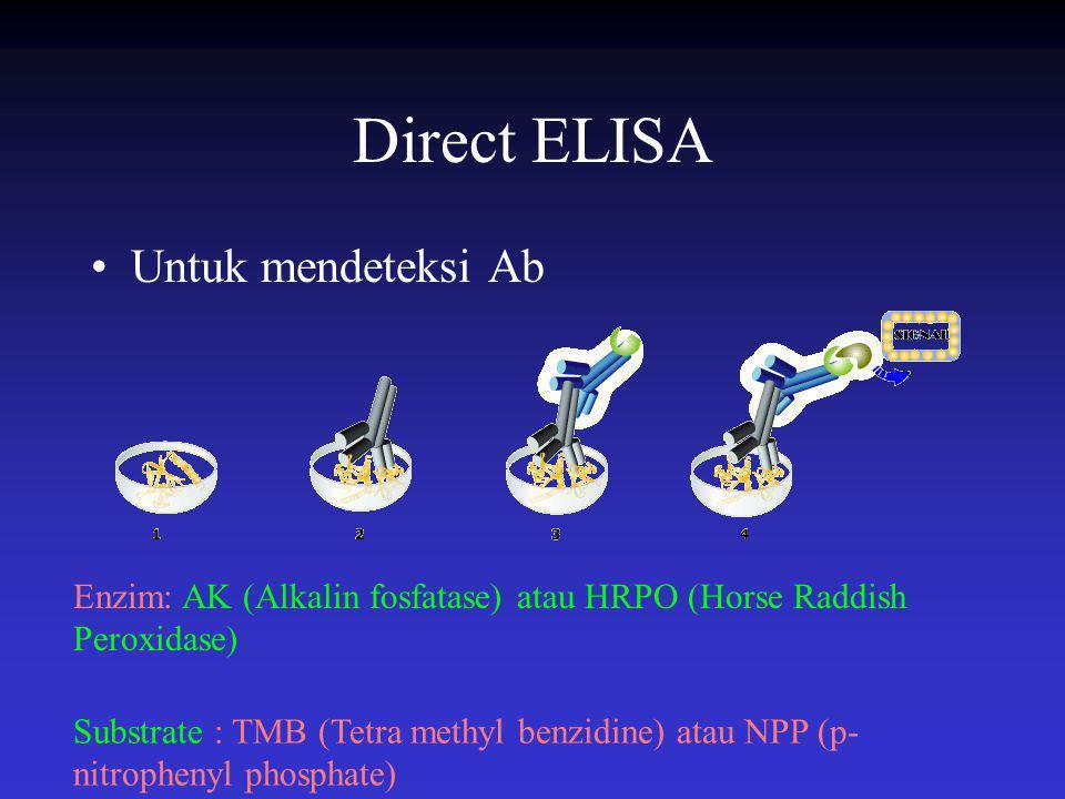 Direct ELISA Untuk mendeteksi Ab