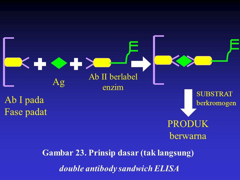 Gambar 23. Prinsip dasar (tak langsung) double antibody sandwich ELISA