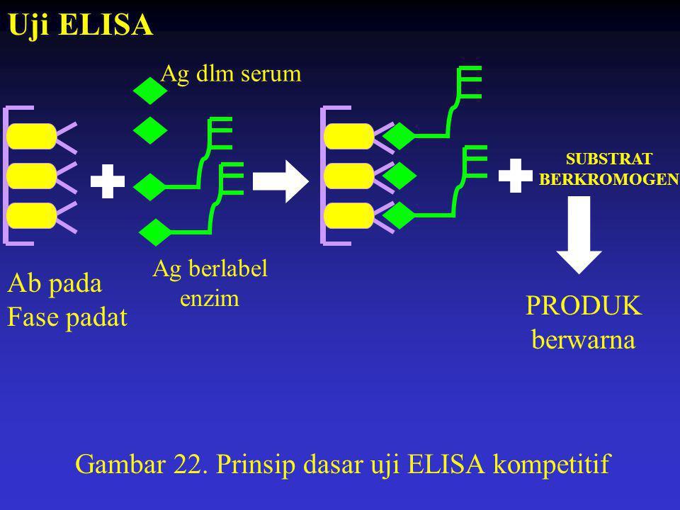 Uji ELISA Ab pada Fase padat PRODUK berwarna