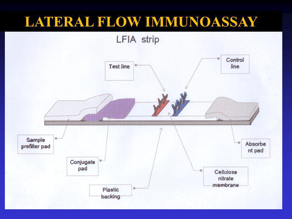 Lateral flow immuno assay
