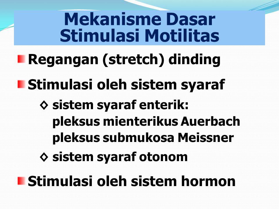 Mekanisme Dasar Stimulasi Motilitas