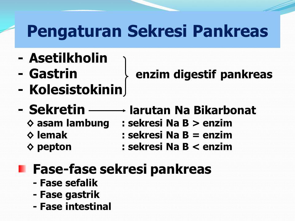 Pengaturan Sekresi Pankreas