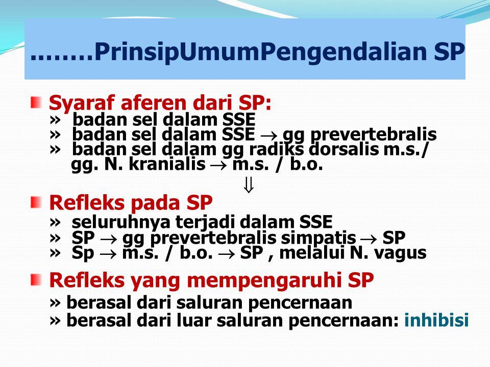 ..……PrinsipUmumPengendalian SP