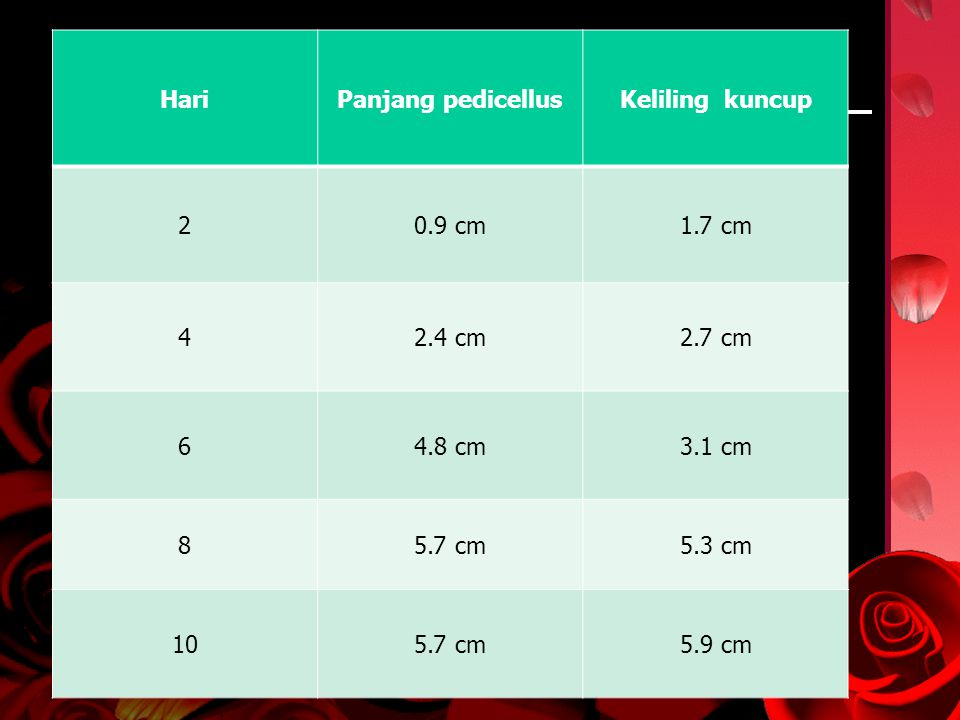Hari Panjang pedicellus. Keliling kuncup. 2. 0.9 cm. 1.7 cm. 4. 2.4 cm. 2.7 cm. 6. 4.8 cm.