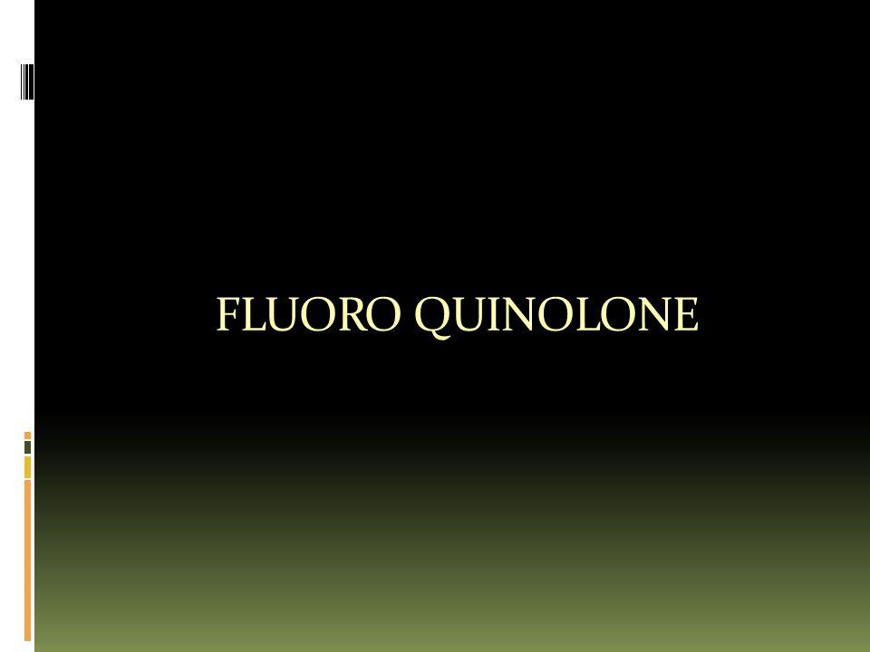 FLUORO QUINOLONE
