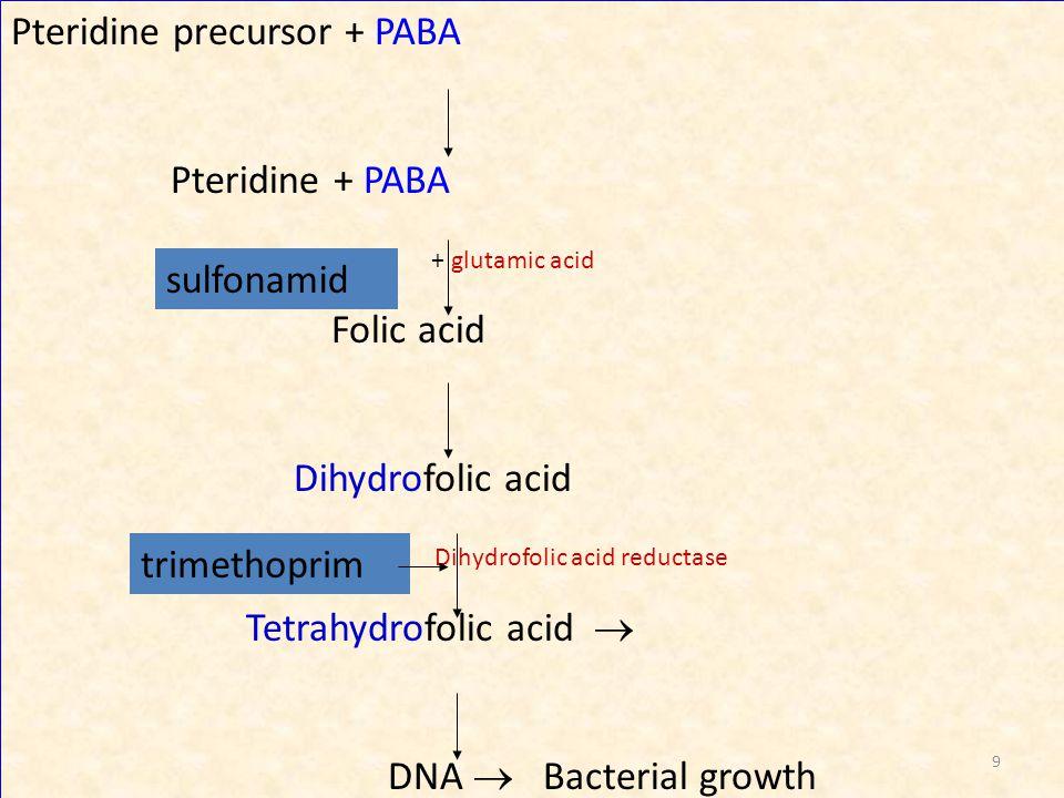 Pteridine precursor + PABA