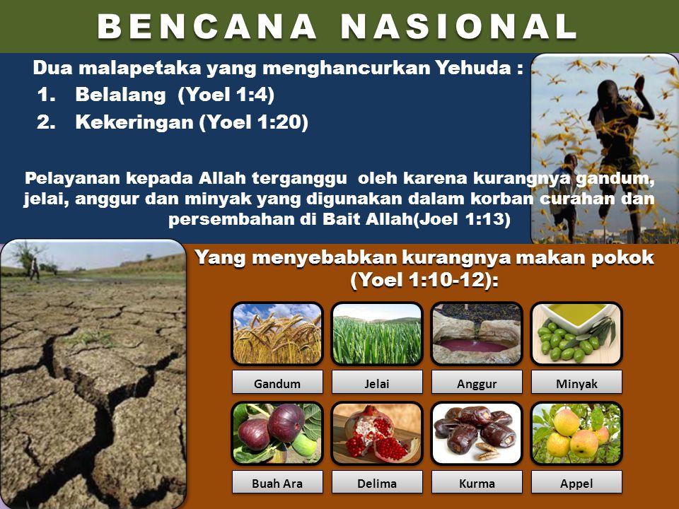 Yang menyebabkan kurangnya makan pokok (Yoel 1:10-12):