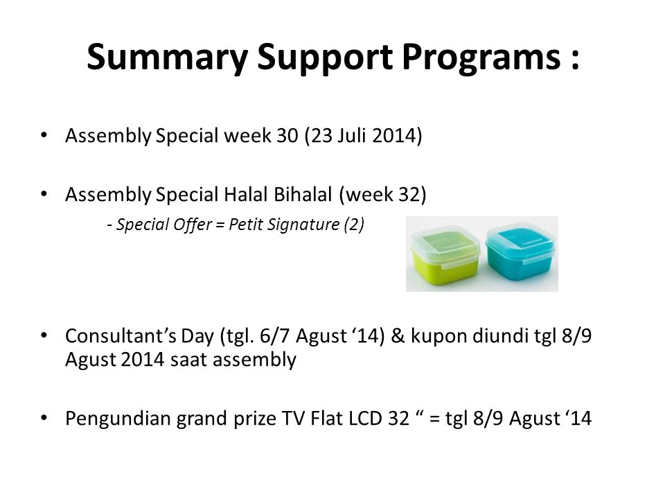 Summary Support Programs :